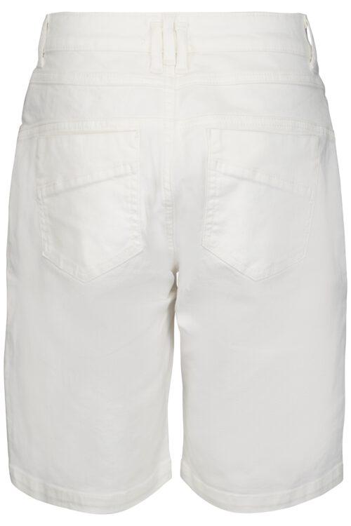 Mola Shorts