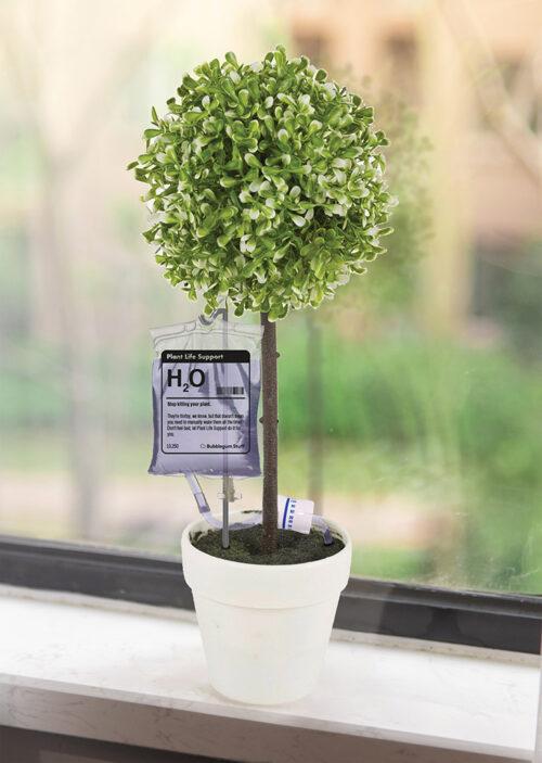H20 Pflanzenüberlebenshilfe